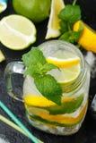 Acqua minerale con il limone, la limetta e la menta detox Dieta Bevanda di rinfresco fotografia stock
