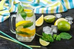 Acqua minerale con il limone, la limetta e la menta detox Dieta Bevanda di rinfresco fotografie stock