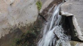 Acqua naturale video d archivio
