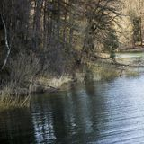 Acqua nebbiosa scura al sorpesee della Germania immagini stock