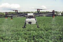 Acqua o antiparassitari di spruzzatura del fuco di agricoltura da svilupparsi sopra il campo verde Fotografia Stock Libera da Diritti