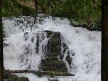 Acqua precipitante Fotografia Stock