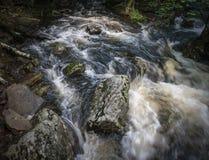Acqua precipitante in un'insenatura della montagna di Catskill immagine stock