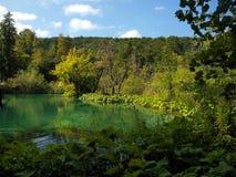 Acqua pulita, parco nazionale - laghi Plitvice, Fotografie Stock Libere da Diritti