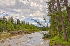 Acqua retrocedere dell'inondazione di Calgary fotografia stock libera da diritti