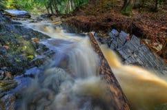 Acqua selvaggia Fotografie Stock