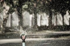 Acqua sorgiva Fotografia Stock