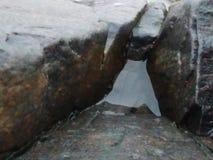 Acqua sulla roccia Immagini Stock Libere da Diritti