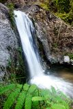 Acqua tropicale di indagine delle cascate fotografia stock