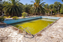 Acqua verde putrida nella piscina abbandonata Fotografie Stock Libere da Diritti