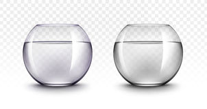 Acquari di Violet Black Transparent Glass Fishbowls Immagini Stock Libere da Diritti