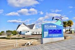 Acquario 2018 del Giappone Kagoshima fotografia stock libera da diritti