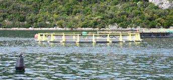 Acquario per produzione del pesce nel mare Fotografia Stock Libera da Diritti