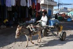 Acquario sulla via Hargeisa. Fotografie Stock