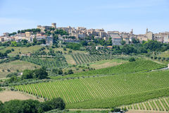 Acquaviva Picena small village on Marche Stock Photo