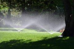 Acquazzone di estate