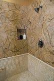 Acquazzone domestico di lusso della stanza da bagno Immagine Stock Libera da Diritti