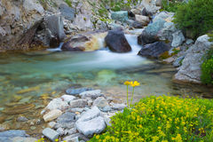 Acque correnti selvagge nelle alpi, esposizione lunga, fine su Fotografie Stock