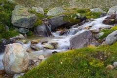 Acque correnti selvagge nelle alpi, esposizione lunga, fine su Immagini Stock