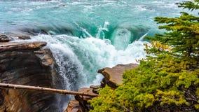 Acque del fiume di Athabasca che precipita a cascata durante le cadute Fotografie Stock Libere da Diritti