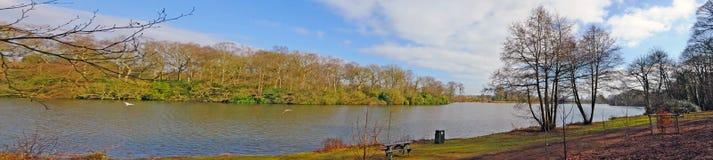 Acque del lago Fotografie Stock