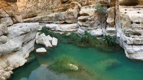 Acque di verde smeraldo di Wadi Shab nell'Oman immagini stock