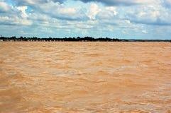 Acque gialle del delta del Mekong Fotografie Stock Libere da Diritti