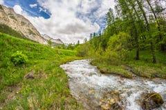 Acque trasparenti scorrenti sulla corrente alpina di elevata altitudine nell'ambiente non contaminato idilliaco nelle alpi france Fotografie Stock