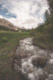 Acque trasparenti scorrenti sulla corrente alpina di elevata altitudine nell'ambiente non contaminato idilliaco nelle alpi france Fotografia Stock Libera da Diritti