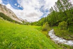 Acque trasparenti scorrenti sulla corrente alpina di elevata altitudine nell'ambiente non contaminato idilliaco nelle alpi france Immagine Stock