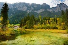 Acque verdi meravigliose del lago Hintersee Paesaggio stupefacente di autunno delle alpi bavaresi sul confine austriaco, Germania Fotografia Stock