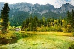 Acque verdi meravigliose del lago Hintersee Paesaggio stupefacente di autunno delle alpi bavaresi sul confine austriaco, Germania Fotografia Stock Libera da Diritti