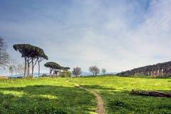 Acquedotti degli Parco κατά μήκος του τρόπου Appian στη Ρώμη Στοκ εικόνες με δικαίωμα ελεύθερης χρήσης