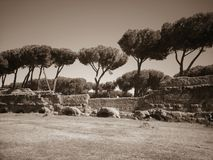 Acquedotto Appio Claudio, Ρώμη Ιταλία Στοκ Εικόνες