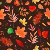 Acquerello Autumn Leaves Set Immagini Stock Libere da Diritti