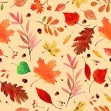 Acquerello Autumn Leaves Set Immagine Stock Libera da Diritti