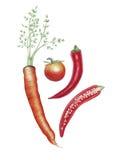 Acquerello botanico delle verdure di autunno Immagini Stock