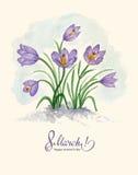 Acquerello cartolina d'auguri 8 marzo con i bucaneve royalty illustrazione gratis