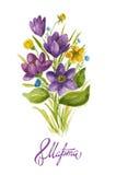 Acquerello cartolina d'auguri 8 marzo con i croco illustrazione di stock
