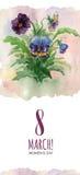 Acquerello cartolina d'auguri 8 marzo con le viole del pensiero illustrazione di stock