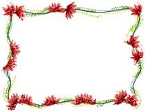 Acquerello del telaio del fiore Fotografia Stock Libera da Diritti