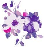 Acquerello di floreale viola Fotografie Stock Libere da Diritti