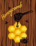 Acquerello di struttura di buona qualità, disegni a penna della mano, api, favo, icone del miele, iscrizione Legno premio Immagine Stock Libera da Diritti