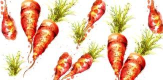 Acquerello di vettore del modello delle carote Illustrazioni fresche delle verdure della molla illustrazione vettoriale