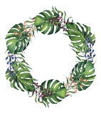 Acquerello dipinto a mano Monstera e corona delle foglie di palma Fotografia Stock Libera da Diritti
