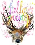 Acquerello Forest Deer e ramo rosa del fiore della molla Fotografia Stock Libera da Diritti