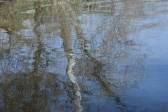 Acquerello pinta della primavera 5 Fotografia Stock