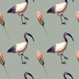 Acquerello senza cuciture del modello con l'ibis, simbolo egiziano illustrazione vettoriale