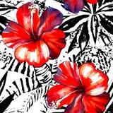 Acquerello tropicale dell'ibisco e piante esotiche grafiche senza cuciture Fotografie Stock