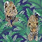 Acquerello tropicale delle foglie di palma dei leopardi e del ghepardo nei precedenti senza cuciture della giungla Immagini Stock Libere da Diritti